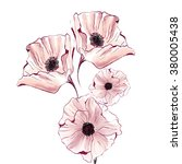 watercolor poppy flower | Shutterstock . vector #380005438