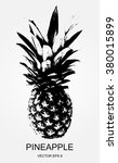 pineapple fruit. vector ... | Shutterstock .eps vector #380015899