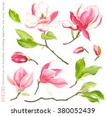 spring collection of blooming...   Shutterstock .eps vector #380052439