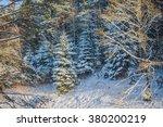 winter christmas tree | Shutterstock . vector #380200219