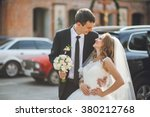 beautiful bride on the... | Shutterstock . vector #380212768