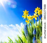 easter background with fresh... | Shutterstock . vector #380227588