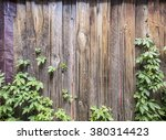 wood fence and vines | Shutterstock . vector #380314423