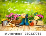 gardening tools and flowers on... | Shutterstock . vector #380327758