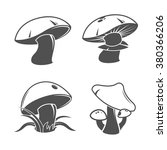 Collection Of Mushrooms. Vector ...