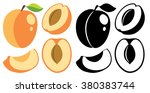vector illustration. collection ... | Shutterstock .eps vector #380383744
