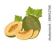 melon on white background | Shutterstock .eps vector #380412760