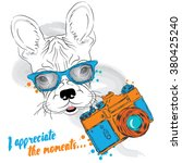 french bulldog with a camera.... | Shutterstock .eps vector #380425240