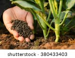 farmer hand giving compost... | Shutterstock . vector #380433403