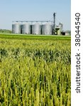 Silver silo in an agriculture landscape - stock photo