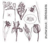 vector collection of hand drawn ... | Shutterstock .eps vector #380466646