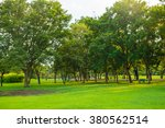 green park with lawn and big... | Shutterstock . vector #380562514