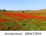 spring blossoming of the red... | Shutterstock . vector #380673904