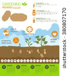 gardening work  farming...   Shutterstock .eps vector #380807170