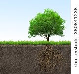 tree with roots  | Shutterstock . vector #380841238