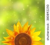 single sunflower with a blurred ... | Shutterstock .eps vector #380892250