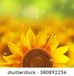 A Blurred Sunflower Field With...