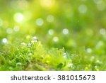 photosynthetic | Shutterstock . vector #381015673