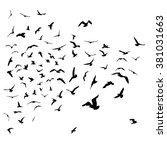 seagulls black silhouette on... | Shutterstock .eps vector #381031663