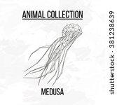 medusa geometric lines... | Shutterstock .eps vector #381238639