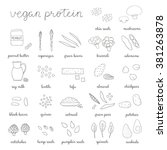 plant based protein. hand drawn ... | Shutterstock .eps vector #381263878