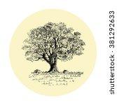 bushy tree in lines | Shutterstock .eps vector #381292633