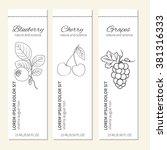 vertical banner with berry ... | Shutterstock .eps vector #381316333