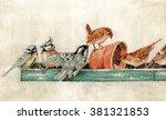 little birds and a feeding... | Shutterstock . vector #381321853
