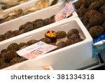 sea urchin  the fresh raw sea... | Shutterstock . vector #381334318