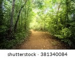 way through the jungle | Shutterstock . vector #381340084