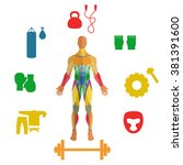 human muscles with icons of... | Shutterstock .eps vector #381391600