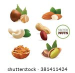 vector realistic collection of... | Shutterstock .eps vector #381411424
