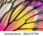Macro Closeup Of Butterfly Win...