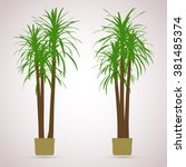 palm. color planting of... | Shutterstock .eps vector #381485374