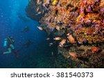 group of scuba divers... | Shutterstock . vector #381540373