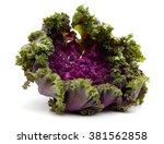 Fresh Kale Flower Isolated On...