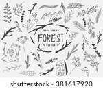 vector floral set. graphic... | Shutterstock .eps vector #381617920
