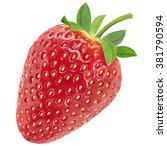 realistic  strawberry garden ... | Shutterstock . vector #381790594