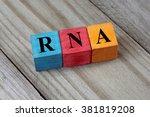 rna  ribonucleic acid  acronym... | Shutterstock . vector #381819208