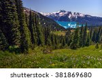 Hillside meadow overlooking the blue-green lake, snow-capped mountains afar