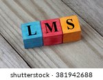 lms  learning management system ... | Shutterstock . vector #381942688