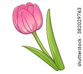 Tulip Cartoon Style  Vector Art ...
