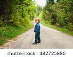 cute toddler boy hiking in... | Shutterstock . vector #382725880