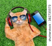 Stock photo cat headphones wearing sunglasses relaxing in the grass 382735573