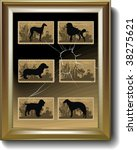 silhouettes  dogs  vector... | Shutterstock .eps vector #38275621