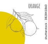 orange vector freehand pencil... | Shutterstock .eps vector #382841860