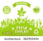 100  organic  eco friendly  ... | Shutterstock .eps vector #382903444