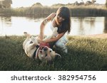 Stock photo girl playing with dog on grass 382954756