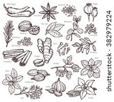 sketch herbs and spices set | Shutterstock .eps vector #382979224
