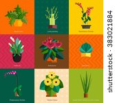 illustration of houseplants ... | Shutterstock .eps vector #383021884
